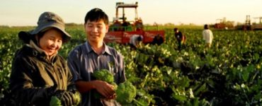 Two Karen people in a market garden with tractor in background