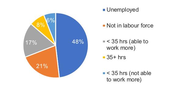 Pie chart showing surveyed employment status