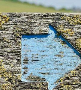 Blue arrow pointing rightward